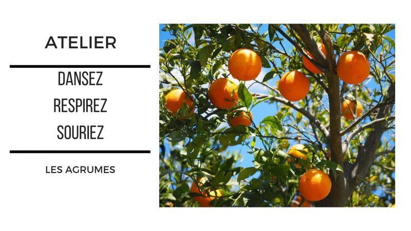 Atelier Dansez -  Respirez - Souriez ... avec les agrumes @ La Ciotat, Pranava | La Ciotat | Provence-Alpes-Côte d'Azur | France